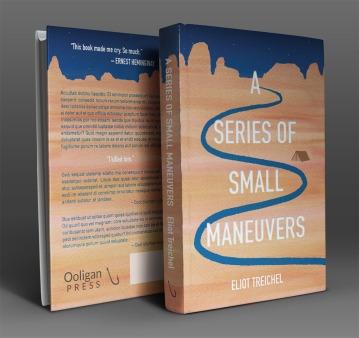 A Series of Small Maneuvers cover Erika Schnatz